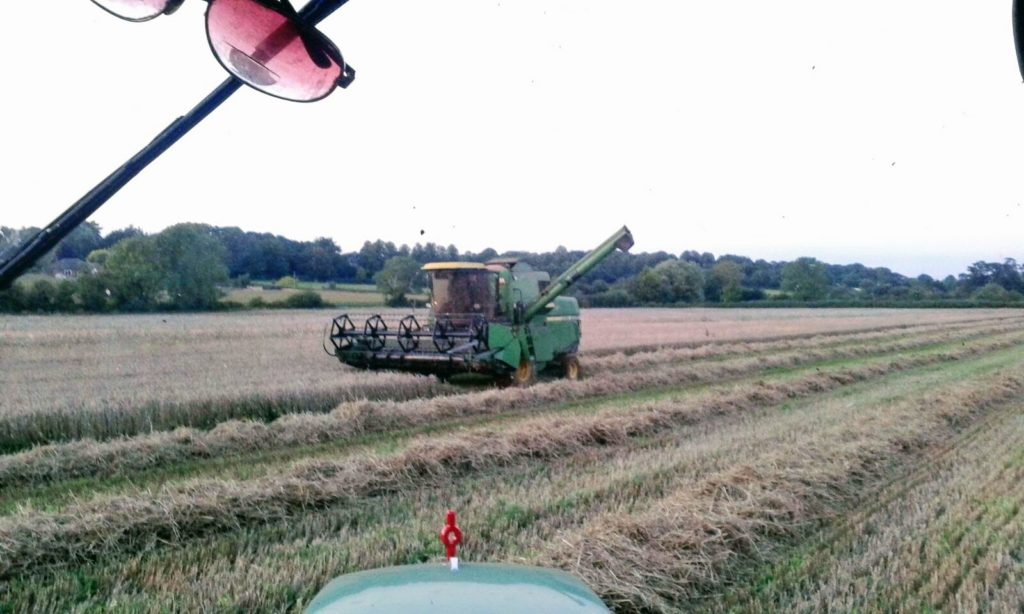 Agriculture is one of the main sectors in the ESR